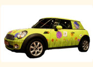 Car Graphics
